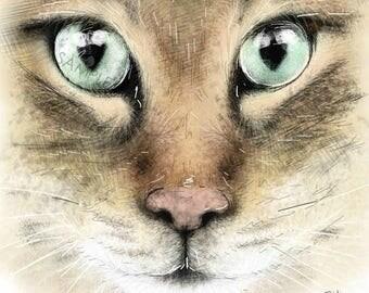 Mia the Bengal // framed cat print // cat portrait // bengal cat // cat lover gift // cat print // bengal cat print // cat gifts