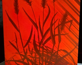Sunset Cornfield - Abstract Greeting Card