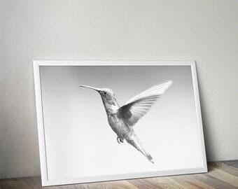 Colibri print, hummingbird print, bird print, colibri wall art, colibri art, black and white, colibri printable, hummingbird art,hummingbird