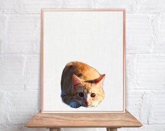 Cat wall art / Kitten home decor / Cat Print / Cat / Cat Art / Cat Wall Decor / Cat peekaboo animal #59