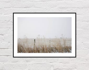 Winter Cows Print, Farm Photography, Rustic Wall Art, Farm Art, Animal Printable, Farm Cows, Winter Decor, Digital Download