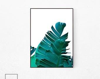 Banana Leaf Print, Botanical Poster, Tropical Leaf Print, Tropical Plant Print, Plant Poster, Plant Printables, Palm Leaf Print, Banana Leaf