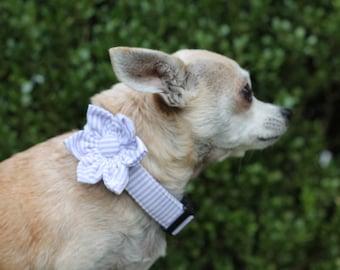 Girl Dog Flower Attachament, Flower for Dog Collar, Dog Flower, Dog Wedding Flower. Flower for Girl Dog. Dog Collar Flower
