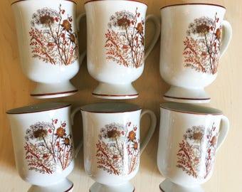 Fanci Florals Collection BRAMBLE Mug Cup Set 6 Japan Wildflowers Brown