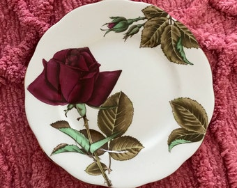 """Vintage """"English Rose"""" Plate 16cm  - Royal Standard - Fine Bone China - Made in England - Free Shipping"""