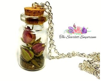 Real Dried Rose Buds in a Glass Vial Silver Plated Long Necklace