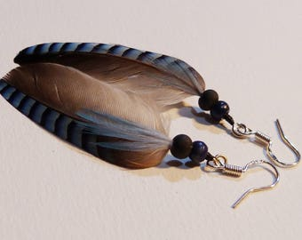 Jay feathers, 100% natural earrings!