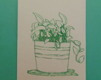 Plants in a Pot - Drawing, Flowers