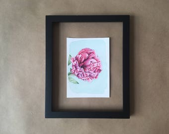 Detailed Peony Original Watercolor Painting