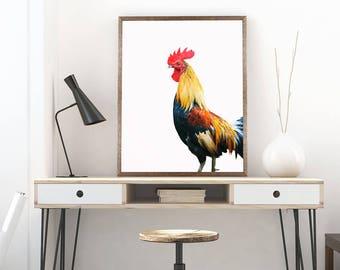 Rooster Printable Wall Art Poster, Animal print wall art, Rooster photography, Minimal wall art, Animal print, Rooster print