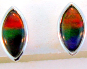 Marquies shape Canadian AAA quality Ammolite Stud earrings set in Sterling Silver