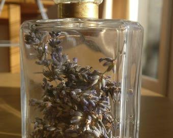Lavender perfume bottle