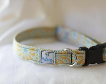 Medium sunshine collar