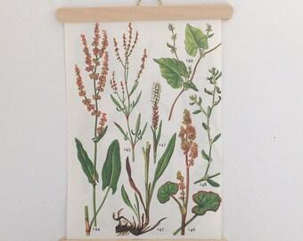 mini plant poster