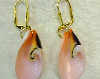 Shell Dangle Earrings in Pink and Black with Lever Back Ear Wires