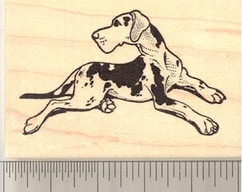 Harlequin Great Dane Rubber Stamp J10406 Wood Mounted