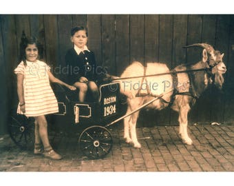 Kids & Goat Cart | Boston, MA 1934 | Children Siblings and Goat Wagon | Antique Photograph