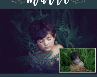 Photoshop Actions: Matte Collection