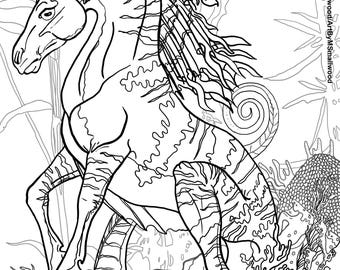 Kelpi - 8x10 Adult coloring pages digital files for print