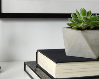 Succulent Planter, Catch-all Bowl, Concrete Planter, Geometric Concrete Planter, Concrete Bowl, Concrete Vessel, Succulent Vessel, Planter