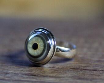 Eyeball Ring, Evil Eye Ring, Taxidermy Eye, Human Eye Ring, Glass Eye, Gift for Her, Size 6