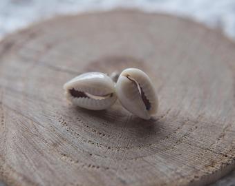 Cowrie Shell Stud Earrings Sterling Silver Backs