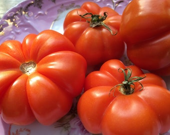 Rosso Sicilian - 50 Tomato Seeds (Heirloom)