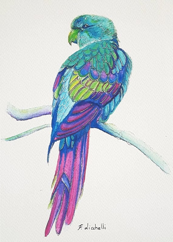 Colored parrot, giclee fine art print of my original watercolor, A5, gift idea for birds lover, home office decoration, sewing room decor.