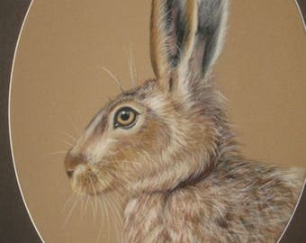 Hare 'Meadhra' Original painting - mixed medium on velour