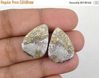 90% SALE Crazy Lace Agate Pair  24Ct (20x15x4 mm) Crazy Shape  Natural gemstone - NS-12799