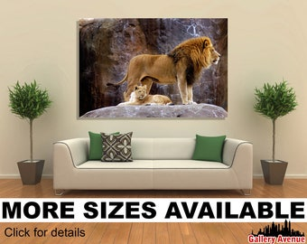 Wall Art Giclee Canvas Picture Print Gallery Wrap Ready to Hang African Lion (Panthera leo krugeri) 60x40 48x32 36x24 24x16 18x12 3.2