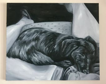 A Puppy's Dream