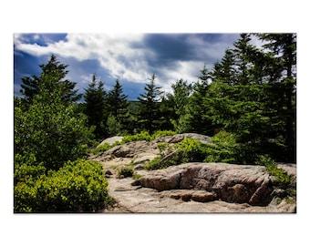 Maine Mountain Path - Nature Photography Print