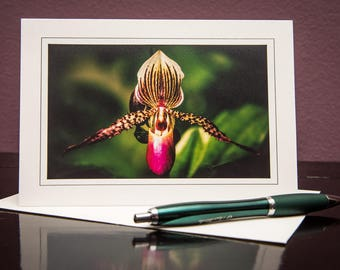 Orchids No.4-Greeting cards-Note Cards-Flower-Nature-Happy Birthday-Family-Love-Photo Card-Floral-Wedding-Celebration-Congratulation-Gift