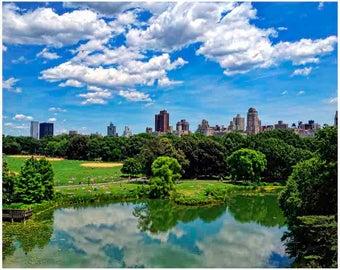 New York, New York print, Central Park, New York City, New York buildings, New York art,nyc print, New York poster, New York wall art