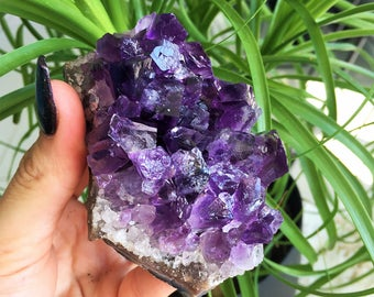 Amethyst Cluster Crystal w/ Free Shipping