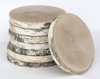 New! | Birch Wood Slice