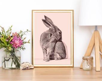 Printable Rabbit Art, Rabbit Printable Art, Nursery Rabbit Art, Rabbit Print Decor, Baby Rabbit Print, Rabbit Print Art, Print Nursery