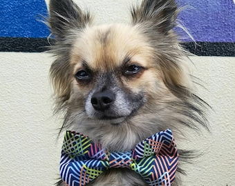 Colourful Geometric Bow Tie, Dog Bow Tie, Pet Bow Tie, Dog Tie, Dog Neckwear, Dog Collar Tie, Pet Photo Prop, Slide on Collar Bow, Cat Bow