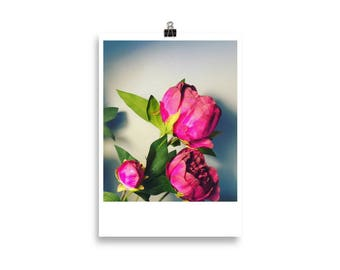 Hot Pink Flowers - Wall Art