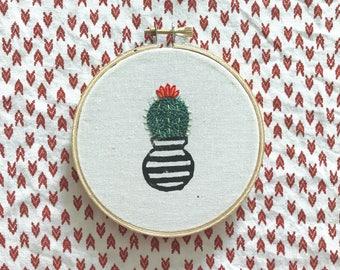 Mini Cactus - 1
