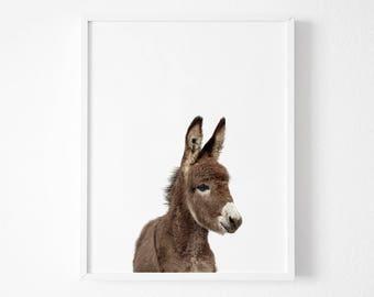 Donkey Print, Nursery Animal Wall Art, Donkey Foal Animal, Cute Baby Donkey, Printable Digital Download, Nursery Animal Decor, Baby Art