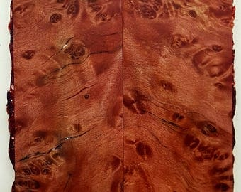 Stabilized Highly Figured Elm Burl Wood With Light Red Resin Tint Knife Scales.