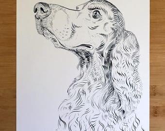 Dog Portrait - Spaniel. 11x14 print of the original artwork.