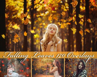 170 Falling Leaves Overlays Falling Leaves Photoshop Overlays  Falling Leaves Overlay  Falling Leaves Photo Overlays Autumn Overlays PNG