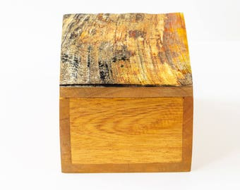 Jewelry box in wood and Horn.
