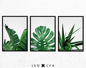 Tropical Leaves Prints, Set of 3 Prints, Botanical Print Set, Tropical Wall Art Decor, Leaf Printable Art, Plant Photography, Green Leaves