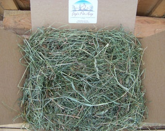 5 lb - 1st cut TIMOTHY mixed grass HAY! Rabbit hay, Guinea Pig hay, Chinchilla hay, Gerbil hay, Hamster hay. Small animal hay.