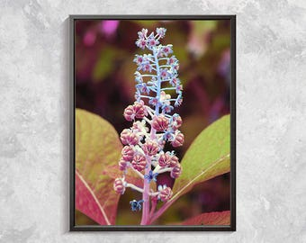 Purple Flowers Photography Pink Flowers Photo Print Nature Photo Print Botanical Wall Art Wild Flower Wall Decor Flower download Exotic Art