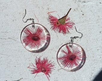 Pink Flowering Gum Earrings